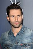 Adam Levine Stock Photography