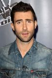 Adam Levine Royalty Free Stock Images