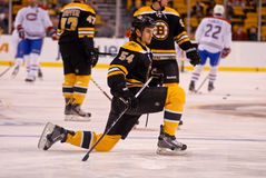 Adam McQuaid Boston Bruins Stock Images