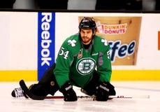 Adam McQuaid Boston Bruins Stock Photography