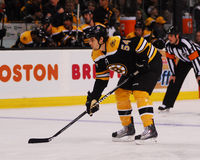 Adam McQuaid Boston Bruins Lizenzfreie Stockbilder