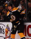 Adam McQuaid, Boston Bruins Stockfotografie