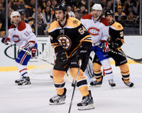 Adam McQuaid Boston Bruins Royaltyfria Foton