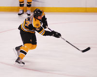 Adam McQuaid, Boston Bruins Stockfotos