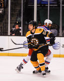 Adam McQuaid, Boston Bruins Lizenzfreies Stockfoto