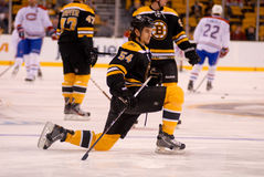 Adam McQuaid, Boston Bruins Stockfotografie