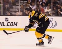 Adam McQuaid Boston Bruins Stockfotografie