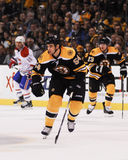 Adam McQuaid Boston Bruins Lizenzfreies Stockbild