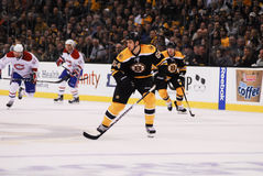 Adam McQuaid, Boston Bruins Lizenzfreies Stockbild