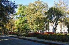 Adam Mickiewicz Square Lizenzfreies Stockbild