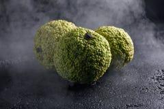 Adam-` s Äpfel auf einem schwarzen Hintergrund im Rauche Adam-` s Äpfel, wie die Dracheeier eingewickelt im Rauche Stockfotografie