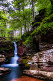 Adam's Falls and tall trees in Rickett's Glen State Park. Pennsylvania royalty free stock photo
