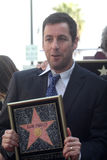 Adam Sandler Stockbild