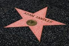 Adam Sandler-Stern auf dem Hollwyood-Weg des Ruhmes Stockfoto