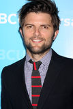 Adam Scott Royalty Free Stock Image