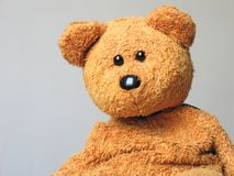 Adam, the Teddy. Looking a bit sad today :o Stock Photography