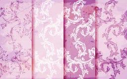 Adamaszka wzór ustawiający wektor Barokowy ornamentu wystrój ornamentu geometryczne tła księgi stary rocznik Menchia barwi tkanin Zdjęcie Stock