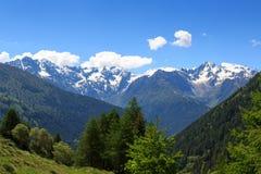 Adamello-Alpen Berge der Panoramaansicht alpine Stockbild