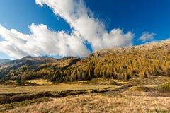 Adamello - Trentino Italien Stockfotos