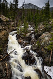 Adams-Fälle, Rocky Mountain National Park Lizenzfreie Stockfotos