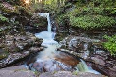 Adams Falls Ricketts Glen Pennsylvania Royalty Free Stock Images