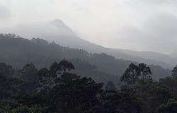 Adams peak, Sri pada Stock Photography