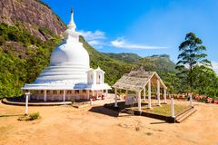Adams Piek, Sri Lanka stock foto's