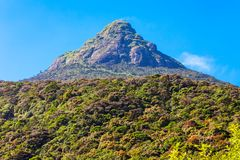 Adams-Spitze, Sri Lanka Lizenzfreie Stockfotografie