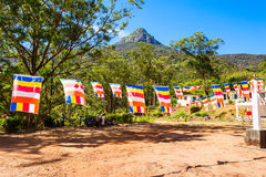 Adams-Spitze, Sri Lanka Stockfotografie