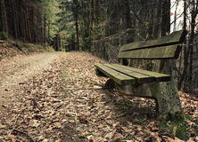 Adandoned wooden bench Stock Image