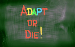 Adapt Or Die Concept. Concept Handwritten With Chalk On A Blackboard Royalty Free Stock Photo