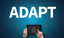 ADAPT. On the tablet pc screen held by businessman hands - online, top view Stock Images