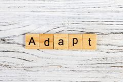 ADAPT Word Written In Wooden Cube concept.  Royalty Free Stock Photo