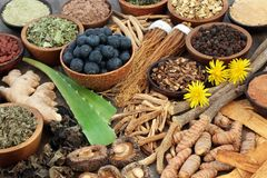 Adaptogen Food Selection stock photography