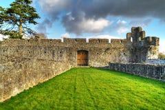 adare城堡内部 免版税库存图片