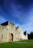 adare城堡co爱尔兰五行民谣 库存照片
