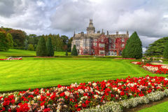 Adare gardens and castle in red ivy. In Ireland royalty free stock images