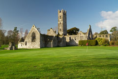 Adare golf club. Abbey in Adare golf club - Ireland Royalty Free Stock Photography