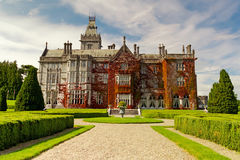 Adare mansion in red ivy Royalty Free Stock Photography