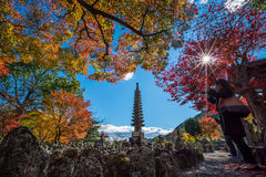 Adashino Nenbutsu-ji świątynia, Tokio obrazy royalty free