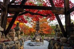adashino nenbutsuji im Herbst, Arashiyama, Lizenzfreie Stockfotos