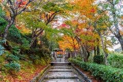 Adashinonenbutsuji temple in autumn, Kyoto in Japan.  Stock Photo
