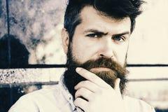 Adatti i capelli barbiere Concetto di mascolinità Il tipo sembra sospettoso I pantaloni a vita bassa con capelli scompigliati toc Fotografia Stock