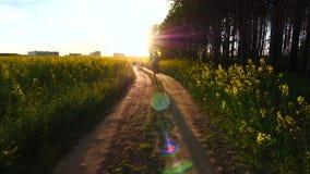 Adatti il funzionamento felice della ragazza lungo la strada alla luce del tramonto, lo stile di vita, felicità archivi video