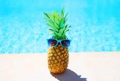 Adatti l'ananas con gli occhiali da sole su uno stagno di acqua blu Immagine Stock