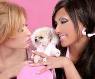 Adatti le donne della bambola con gli anni 80 di colore rosa del cane della chihuahua immagine stock libera da diritti