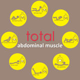 Adbomianal muscle on yellow circle Royalty Free Stock Photos