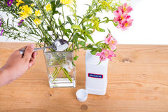Add bleach powder into vase with water to keep flowers fresher Royalty Free Stock Photo