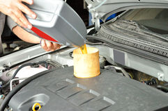 Add engine oil of car Stock Photography