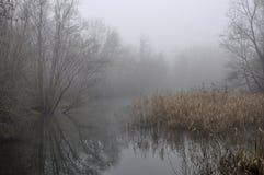 Adda Flussverzweigung #1, Lombardei Stockfotografie